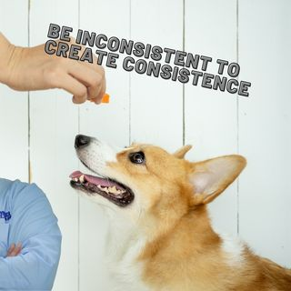 being inconsistent to create consistence ep 44 6-8-2021