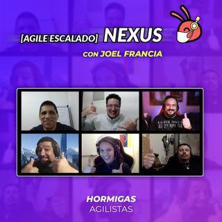 EP34 - Agile Escalado - Nexus con JoelFrancia