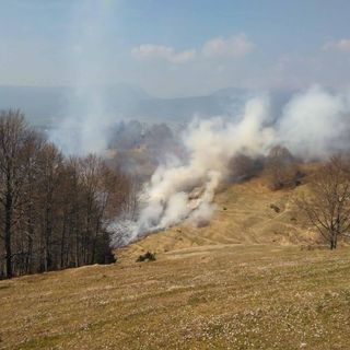 Incendi boschivi, la protezione civile regionale ha dichiarato lo stato di grave pericolosità