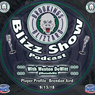 Blizz Show Podcast: Player Profile | Brendan Aird | 9/13/18