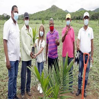 Proyecto agroindustrial en Repelón