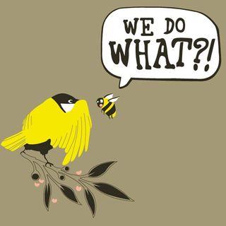 Kitten Kong 662: The Birds & The Bees.