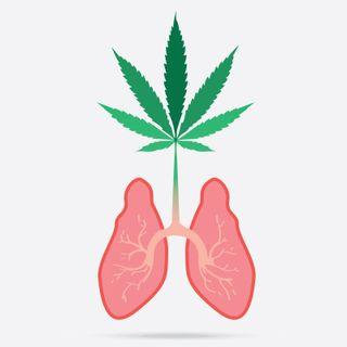 """""""Il fumo di cannabis crea gli stessi danni polmonari del tabacco, ma più in fretta"""", l'ultima bufala di Repubblica"""