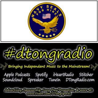 Top Indie Music Artists on #dtongradio - Powered by navysealsforhire.com