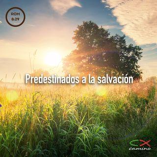 Oración 11 de marzo (Predestinados a la salvación)