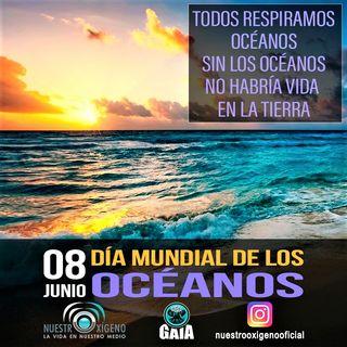 NUESTRO OXÍGENO Todos respiramos océanos-Día de los acéanos 2021