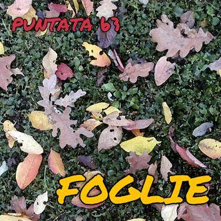 Puntata 63 - Foglie