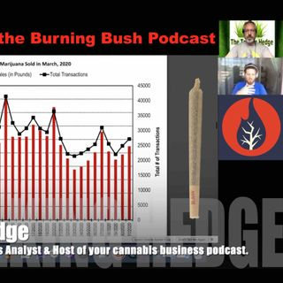 Arizona MMJ Market with the Burning Bush Podcast