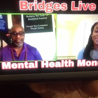 Episode 111 - Bridges With Dr Paul w Dyer
