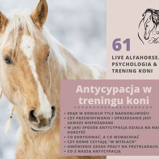 Live 61: Antycypowanie w treningu koni