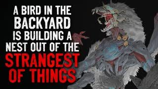 """""""A bird in the backyard is building a nest out of the strangest things"""" Creepypasta"""