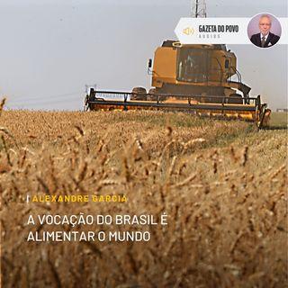 A vocação do Brasil é alimentar o mundo