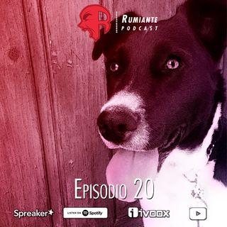 20. Rosario, mi perro Jaibo vendrá y te jalará las patas.