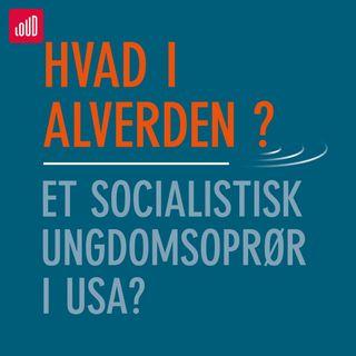 Hvad i alverden? #1 Et socialistisk ungdomsoprør i USA