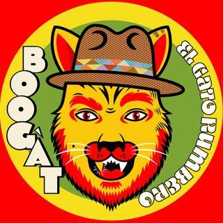 La Selección de Carla ~ Boogát (El Gato rumbero) ♫