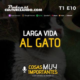 E10 • Larga vida al gato • Cosas muy importantes • Culturizando