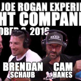 Fight Companion - October 8, 2016