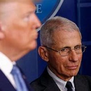 WNR:  Breaking News Trump About To Fire #DrFauci Over Pandemic