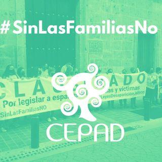 Cápsula 1: #SinLasFamiliasNo, proceso de armonización en Jalisco