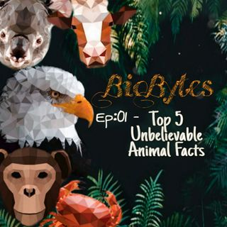 Top 5 Amazing Animal Facts