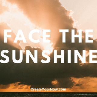 1564 Face the Sunshine
