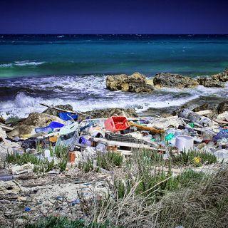 L'inquinamento marino di Gabriel Mansueto