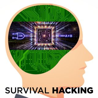 SPECIALE05 - Survival Hacking - Logiche Programmabili