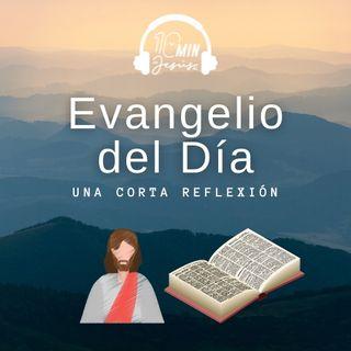Evangelio San Mateo 11, 28-30 (9-XII-2020)