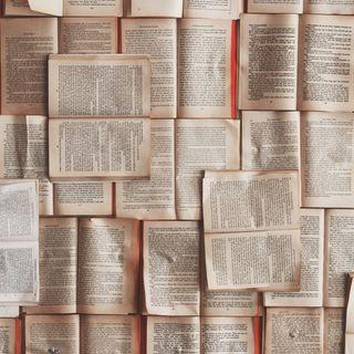 Perché alcuni autori scrivono in un'altra lingua? Ce lo spiega il Prof. Santipolo