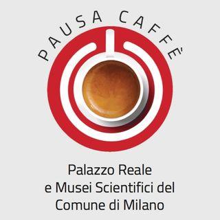 Palazzo Reale e Musei Scientifici del Comune di Milano