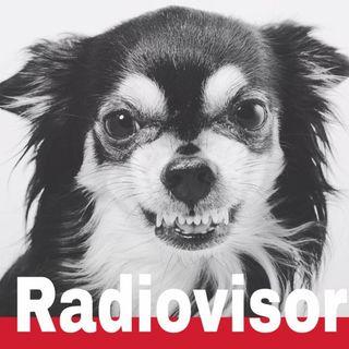 RADIOVISOR - The Fools Like Me