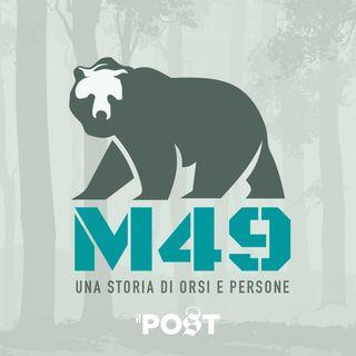 M49 - Una storia di orsi e persone