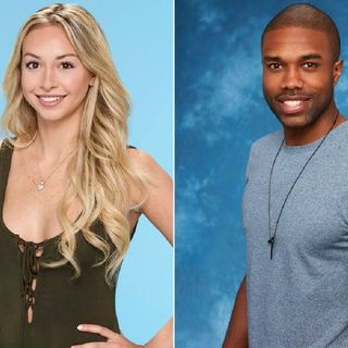 Production Shuts Down On The Bachelor Paradise Over Alleged Misconduct.