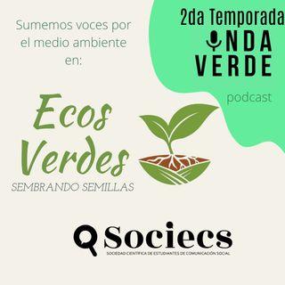 Onda Verde T2 / Ecos Verdes - Ep. 04: Semillas Nativas y su Conservación