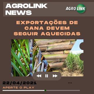 Podcast: Exportações de cana seguem aquecidas e tendência é seguir neste ritmo