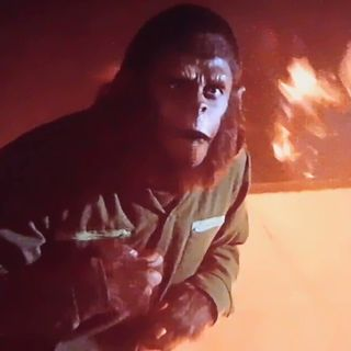 Cinema du Fromage: Conquest of the Planet of the Apes (1972)