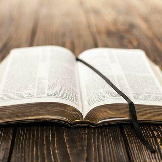 Episodio 5. Proverbios 17 - Tenejapa Tseltal