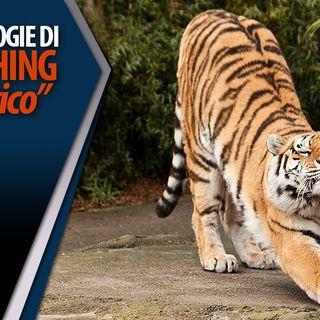 Gian Mario Migliaccio | Allungamento muscolare, lo stretching statico