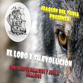 El lobo, su evolución y Never cry wolf con Vicente Palacios
