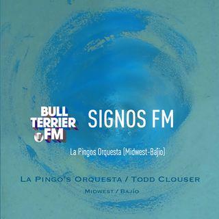Primer Contacto 15 - La Pingos Orquesta (Midwest-Bajío)