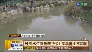 17:01 【台語新聞】高雄登革熱24例 拉高水位滅蚊挨批 ( 2019-06-24 )