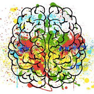 Come funziona la memoria umana? Strategie per preservare le nostre sinapsi!