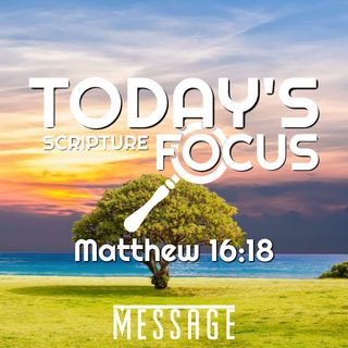 Thoughts in Worship 12.11.2018