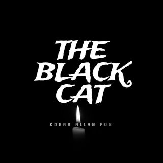 THE BLACK CAT by Edgar Allan Poe, part 3 - audiobook