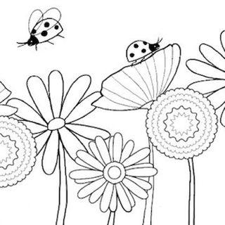I fiori di Tata 1cl (Cinzia)