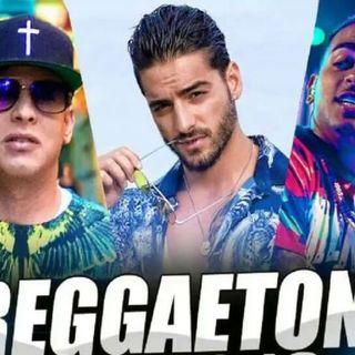 Reggaetón Variado En Vivo