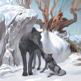 Cap. 6 - La pelle del lupo