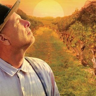 FROM THE VINE - Joe Pantoliano Interview