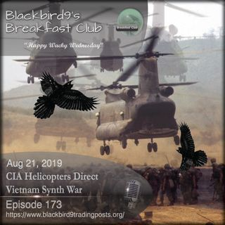 CIA Helicopters Direct Vietnam Synth War - Blackbird9 Podcast