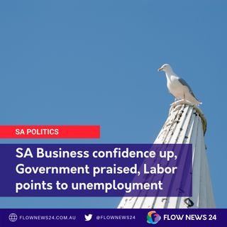Regional SA's skills shortage and business confidence